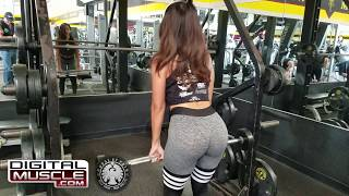 The Queen of Curves: Vida Guerra Trains at Gold's Venice! (Iron Diaries)