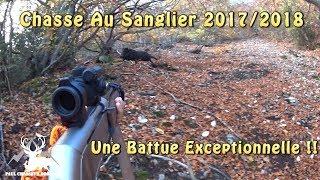 Chasse Au Sanglier - Charge D'un Sanglier 73 Kilos ! - 4 Sangliers Au Même Poste !!