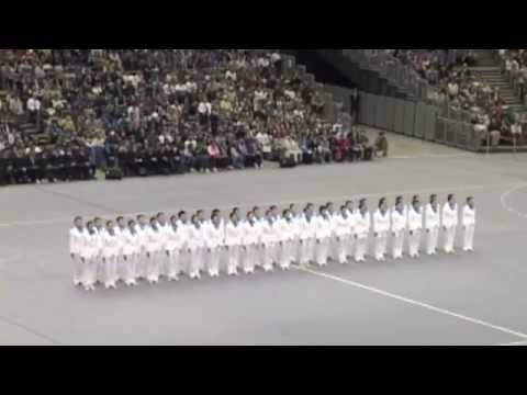 Japanese Precision Walking Competition.mp4
