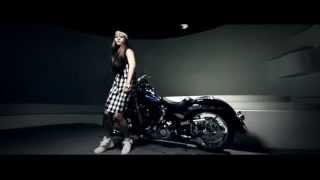 SS SWAG ( OFFICIAL MV )