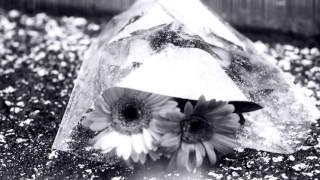 Ynnek - Dans mes pensée - [Clip Officiel]