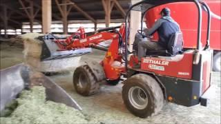Valet de ferme Thaler 2848 H