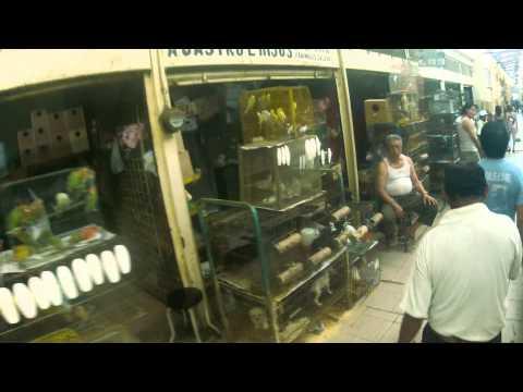 Mercado Lucas de Galvez Mérida Yucatán.