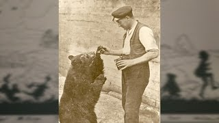 The bear who inspired Winnie-the-Pooh