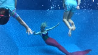 How to swim with a mermaid - Z Sisters