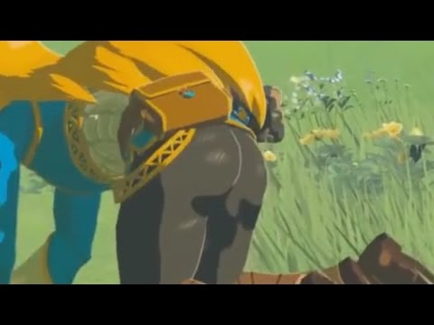 The Legend of Zelda Breath of the Wild The Best Glimpses of Zelda s Butt Zoomed and Slowed