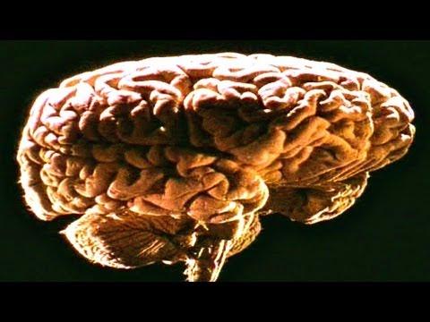 Naked Science Telepathy