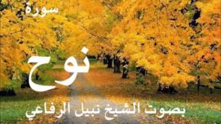 سورة نوح الشيخ نبيل الرفاعي