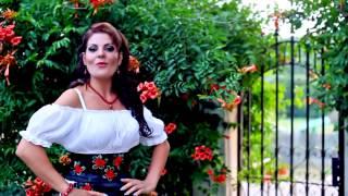 Colaj Muzica de Petrecere 2016 - Violeta Constantin