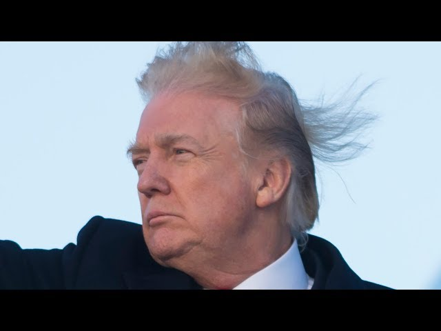 The Truth About Donald Trump's Hair Revealed