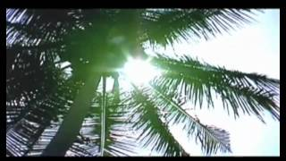 l'Islam [Documentario]