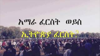 Download Ethiopian First or Amhara First? 3Gp Mp4