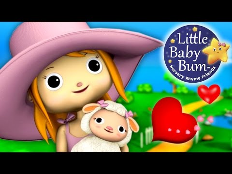 Xxx Mp4 Mary Had A Little Lamb Little Baby Bum Nursery Rhymes For Babies Videos For Kids 3gp Sex