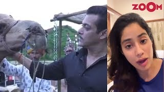 Salman Khan meets Sultan on the sets of Dabangg 3 | Janhvi makes a BIG announcement | Insta Zoom