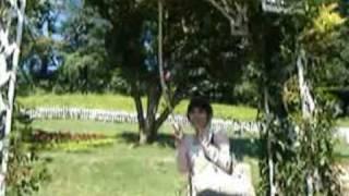 蓬萊仙山vs越南新娘
