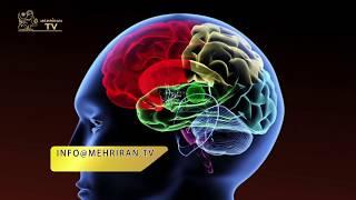 تلویزیون مهر ایران- تلویزیون تخصصی فرهنگ و تمدن ایرانی به اندیشه دکتر رضا هازلی