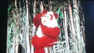 Elmo's World Wild Animals Imagination