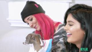Kylie  Janner and Jenna Marbles read mean dog tweets (FULL APP VIDEO)