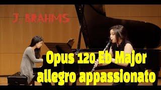 Johannes Brahms Clarinet Sonata No.2 Eb  II movement