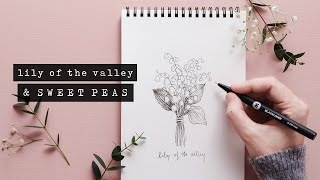 How To Draw Sweet Peas + Lily of the Valley | Floral Illustration