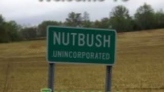 Nut Bush Tennessee Birth Place of Tina Turner