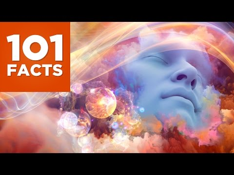 101 Facts About Dreams