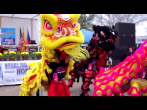 Lunar New Year Hong Kong 4 Houston TX 2015 Market Festival