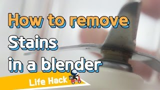 [Life Hacks] How to Remove Stains in a Blender   sharehows