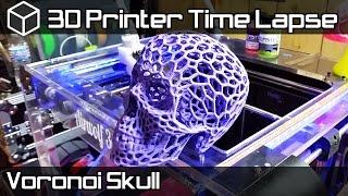 3D Printer Time Lapse - Voronoi Skull - 3D Printed Skull