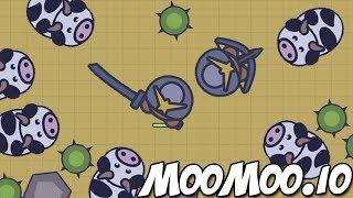 MooMoo.io Samurai, Cows, Deserts & New Weapons (MooMoo.io New Update, Cows, Bulls & Desert Biome