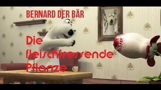 Bernard der Bär - Die fleischfressende Pflanze