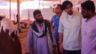 Eid ul Azha   Bekar Vine 2015