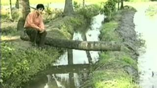 Cây cầu dừa - Trọng Phúc