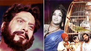Pinjara | Full Movie (2016) | Shreeram Lagoo, Sandhya | Review