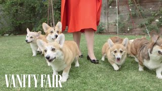 Meet the Queen's Royal Corgis | Vanity Fair