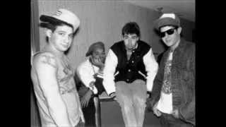 Beastie Boys - The New Style