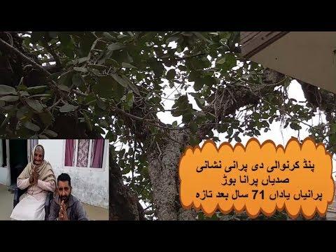Xxx Mp4 Pind Karan Wali Tehsil Sambreyal Puranay Nishan Aj V Zinda Presents Sanjha Punjab 3gp Sex