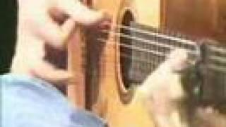 Paco de Lucia - Almoraima Falseta - Bulerias (Good Quality)