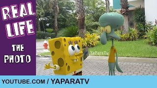 SpongeBob in real life 12