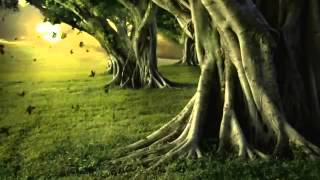 Bangla best gojol কবর যেদিন ডাকবে আমায়  Bangla Islamic song