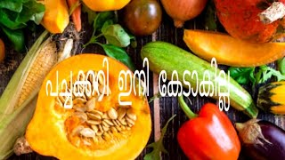 Kitchen Tips / Kitchen Tips In Malayalam / How to store vegetables / Cooking tips