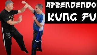 KUNG FU ONLINE Sequencias de Golpes - Conheça as Técnicas do Estilo Chuan Tã Ísso #KungFu Aula 08