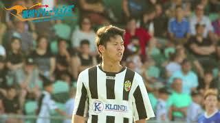 (海外サッカー)Illawarra  Premire League ファイナルシーリーズ決勝戦(豪州ソリューションズ)