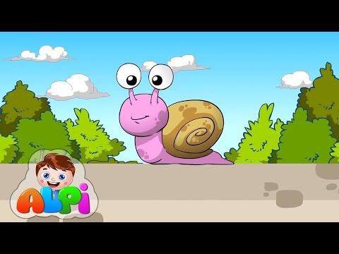 Sümüklü Böcek Duvarda Gezecek Şarkısı | Çocuk Şarkıları 2016 Alpi ve Arkadaşları