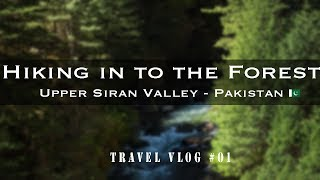 Hiking into the Dense forest of Dhor in Mangaducha | A Travel Vlog | Upper Siran Valley