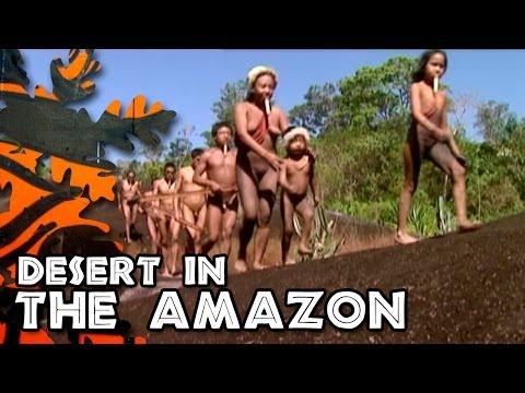 Xxx Mp4 Desert In The Amazonia 3gp Sex