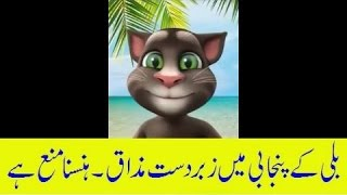 Funny Talking Tom- Punjabi, Urdu, Hindi 2017 part 1 FUNNY SONG