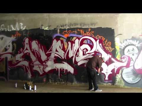 Anemal X Fresh Paint #1