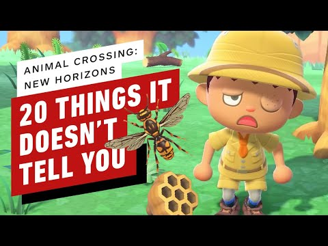 20 Things Animal Crossing New Horizons Doesn t Tell You