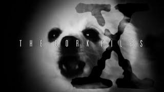 The Bork Files